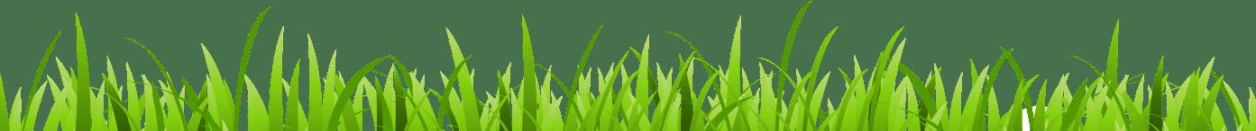 grass-luftreiniger